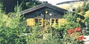 Ferienhaus Menzel in Willingen-Bömighausen - kleines Detailbild
