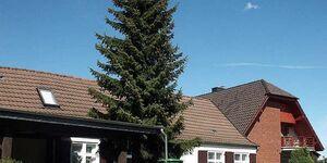 Ferienwohnungen in Altefähr   WE620, FEWO V in Altefähr - kleines Detailbild