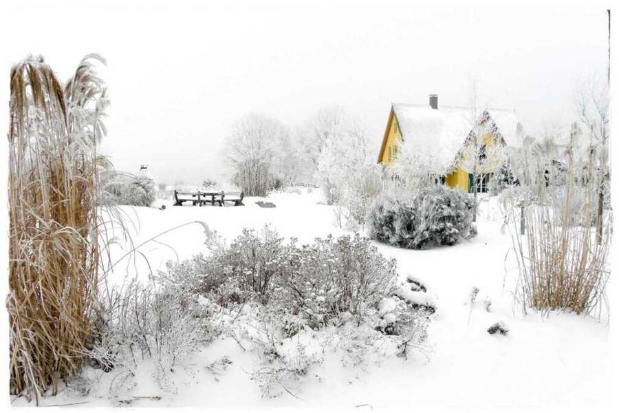 Achterlandhaus, Haus Möwe