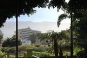 Blick vom Taoropark zum Apartment