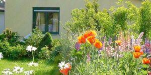 Ferienwohnungen Polchow - direkt am Wasser, Ferienwohnung Bodden - Blick aufs Wasser in Glowe OT Polchow - kleines Detailbild