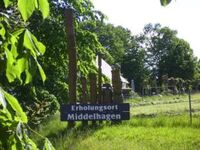 'Haus Rosengarten'Angebot März, Apr+Nov,Dez  WE10015, Lachmöwe in Middelhagen auf Rügen - kleines Detailbild