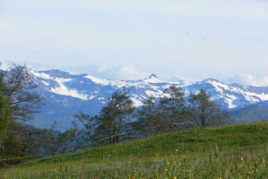 Blick vom Höhenweg zum Bregenzer Wald