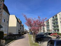 Ferienwohnung Düne 26-ZABE, Düne 26-3-Räume-1-4 Pers.+1 Baby in Karlshagen - kleines Detailbild