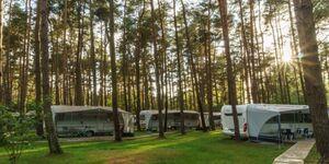Urlaub im Wohnwagen - mitten im Wald, Wohnwagen 01 (neu) in Lütow - Usedom - kleines Detailbild