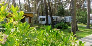 Urlaub im Wohnwagen - mitten im Wald, Wohnwagen 04 (neu) in Lütow - Usedom - kleines Detailbild