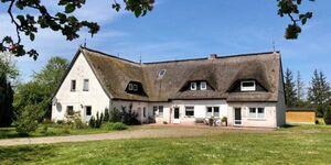 Ferienhof Kwijas, App. 3 in Trent auf Rügen - kleines Detailbild