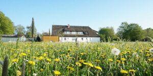 Ferienhof Kwijas, App. 5 in Trent auf Rügen - kleines Detailbild