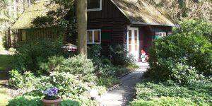 Feriendomizil Bockelmann, Ferienhaus Bockelmann in Bad Bevensen - kleines Detailbild