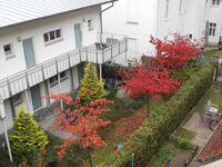 Villa Jasmin**** Bäderarchitektur alt und neu, 2-Zi.-App. J6, 1. OG, großer Balkon in Heringsdorf (Seebad) - kleines Detailbild