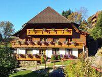 Bühlhof - Ferienwohnung 5 in Todtnauberg - kleines Detailbild