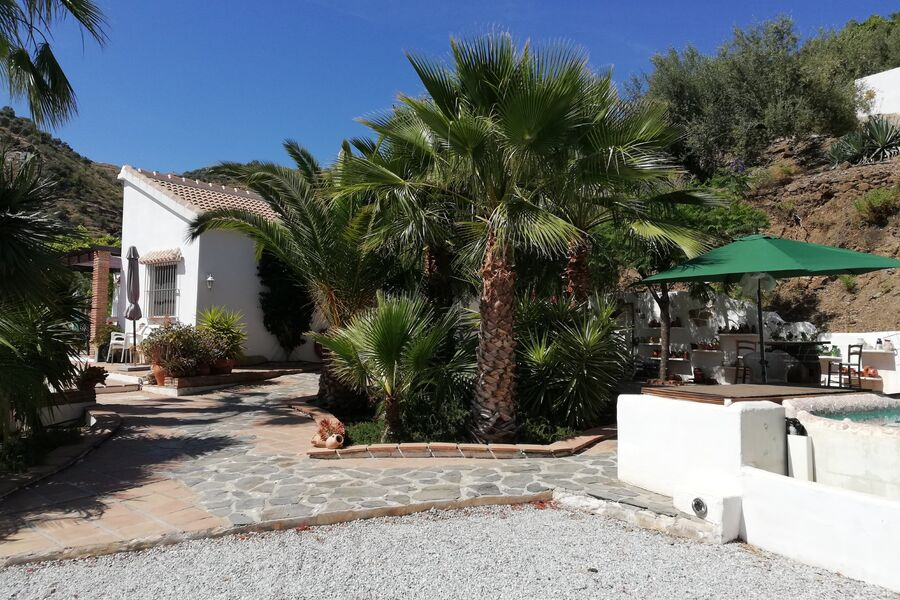 Finca Eduardo, Pool, Palmengarten