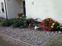 'Haus Bärbel' nur 300 m zum Badestrand  - WE 15535, Fewo-Bärbel in Lietzow auf Rügen - kleines Detailbild