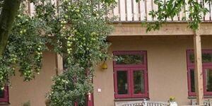 Landhof zur Meierei - auch Reitferien, FWB in Mallin - kleines Detailbild