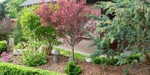 Ferienhaus-Grüne Oase, Ferienhaus Grüne Oase in Barth - kleines Detailbild