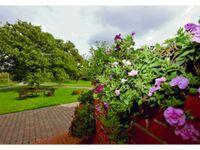Ferienwohnungen im Sonnenhaus, Morgentau in Putbus OT Ketelshagen - kleines Detailbild