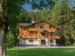 Bio Holz Appartementhaus Heimat in Ramsau am Dachstein - Österreich - kleines Detailbild