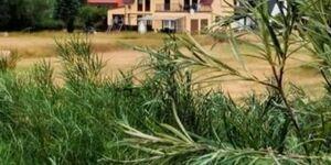 *** Ferienwohnungen 'Wiesenblick', *** FW 4 im EG in Trassenheide (Ostseebad) - kleines Detailbild