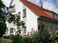 FeWo im Arzthaus, FeWo 57 qm in Ribnitz-Damgarten - kleines Detailbild