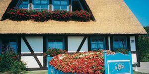 Pension Schwalbennest, Reethaus 55 qm in Ribnitz-Damgarten - kleines Detailbild