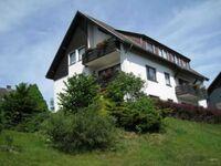 Pfeifer's Appartementhaus, 1-Raum-Appartement in Altenau - kleines Detailbild