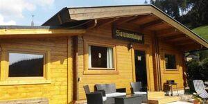 Knyrim's Blockhaus, Blockhaus in Wildemann - kleines Detailbild