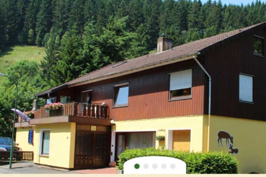 Pension Haus Brückner - Ferienwohnung, Ferienwohnu