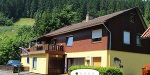 Pension Haus Brückner - Ferienwohnung, Ferienwohnung in Wildemann - kleines Detailbild