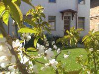 TSS Ferienwohnungen Otto - ruhige, zentrale Lage, FW2 in Sassnitz auf Rügen - kleines Detailbild