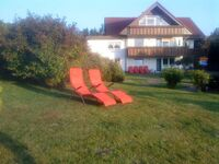 Haus Jasmin, Wohnung 6 'Klatschmohn' in Sankt Andreasberg - kleines Detailbild
