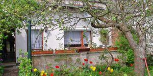 Ferienhaus Malchow SEE 4671, SEE 4671 in Malchow - kleines Detailbild