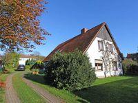 Ferienwohnung Boltenhagen MOST 973, MOST 973 in Boltenhagen (Ostseebad) - kleines Detailbild
