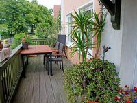 Appartementhaus zur Brücke direkt am See, Ferienappartement Sonnenblume in Seedorf - kleines Detailbild
