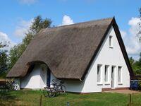 Doppelhaus Hiddensee bei Vitte, Doppelhaushälfte in Vitte - kleines Detailbild