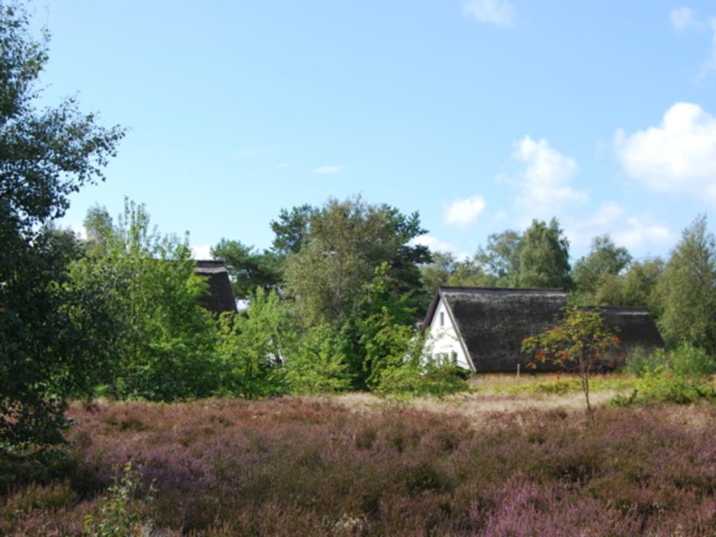doppelhaus hiddensee bei vitte doppelhaush lfte terrasse in vitte mecklenburg vorpommern. Black Bedroom Furniture Sets. Home Design Ideas