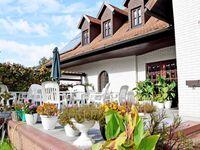 Ferienwohnungen Kölpinsee Familie Hahn, Ferienwohnung 2 Fam. Hahn in Loddin (Seebad) - kleines Detailbild