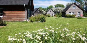 Bei Zingst: Schmidt's Ferienhäuser, Ferienhaus 8 in Lüdershagen - kleines Detailbild