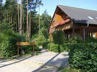 Feriensiedlung Kiefernhain, Ferienhaus Fledermaus in Krakow am See - kleines Detailbild