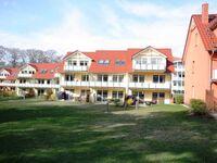Ferienpark Streckelsberg *10 Min. zum Ostseestrand*, Seemöwe 'Kunst' 201 in Koserow (Seebad) - kleines Detailbild