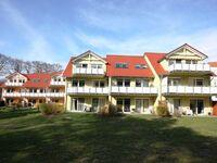 Ferienpark Streckelsberg *10 Min. zum Ostseestrand*, Uferschwalbe 202 in Koserow (Seebad) - kleines Detailbild