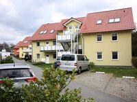 Ferienpark Streckelsberg *10 Min. zum Ostseestrand*, Seemöwe 'Silber' 203 in Koserow (Seebad) - kleines Detailbild