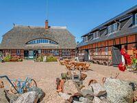 Ferienappartements auf dem Reddevitzer Hövt mit Seeblick, 02 Ferienappartement mit Seeblick in Alt Reddevitz - kleines Detailbild