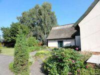 Landhaus Ulrich, Ferienwohnung unten in Bergen OT Lubkow - kleines Detailbild