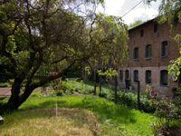 Ferienwohnung Landhaus Neparmitz TZR, Ferienwohnung Birke in Poseritz - kleines Detailbild