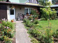 Ferienhaus Kölpinsee USE 2221, USE 2221 in Kölpinsee - Usedom - kleines Detailbild