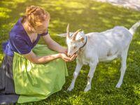 Gästehaus Anderlbauer, Ferienwohnung Alpenrose in Schliersee - kleines Detailbild