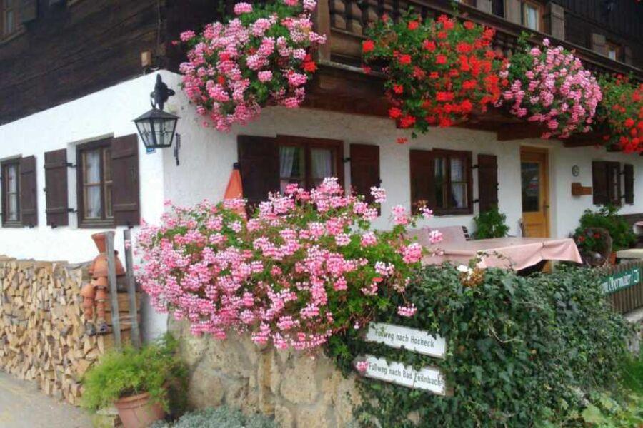 Ihre Ostterrasse - im herrlichem Blumenmeer