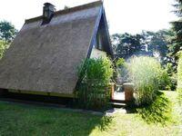 Reetdachhaus in Quilitz auf Usedom, Reetdachhaus Quilitz in Quilitz - kleines Detailbild