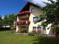 Haus Nagelschmidt - Ferienwohnung Fernblick Birgland in Birgland - kleines Detailbild
