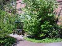 Ferienwohnungen Ehlers-Bastelstudio, Fewo 1 Ehlers in Bad Bevensen - kleines Detailbild